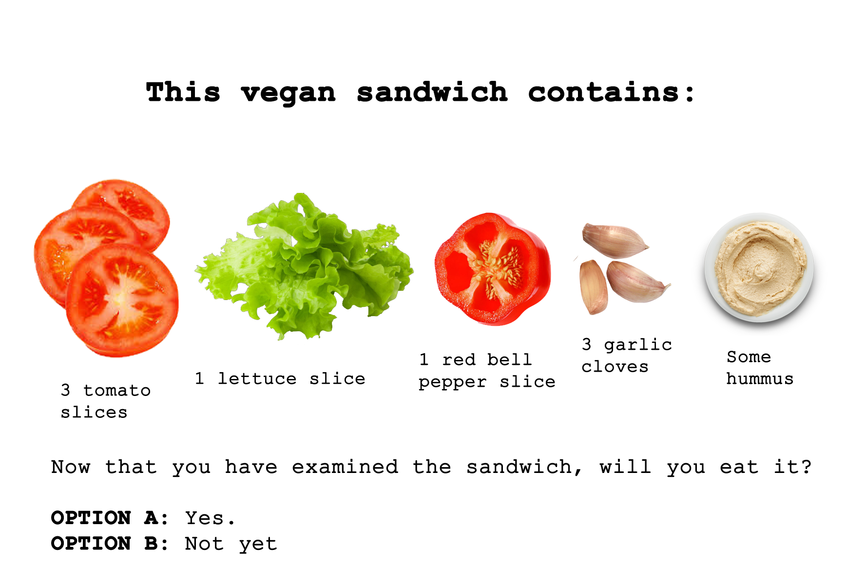 Jack examines the vegan sandwich